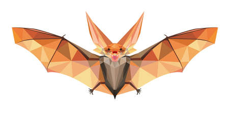 vlad: Funny Flying Night Bat in Polygonal Style