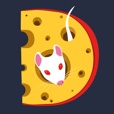 White Lab Rat in Dutch Cheese with Holes