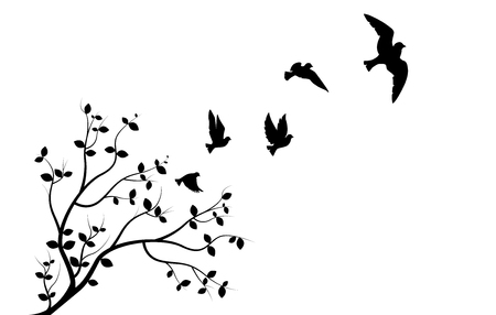 Flying Birds on Branch, Wall Decals, Three Birds Three Design, Couple of Birds Silhouette. Art Design, Wall Decor isolated on white background Standard-Bild - 127393922
