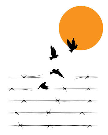 Barbed wire transforms into the flying birds on sunset, vector. Flying birds silhouettes isolated on white background. Minimalist poster design in a frame. Art design, artwork. Synonym of freedom Ilustración de vector