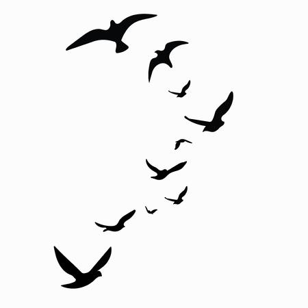 Silhouet van een zwerm vogels. Zwarte contouren van vliegende vogels. Vliegende duiven. Tatoeëren. Geïsoleerde objecten op witte achtergrond.