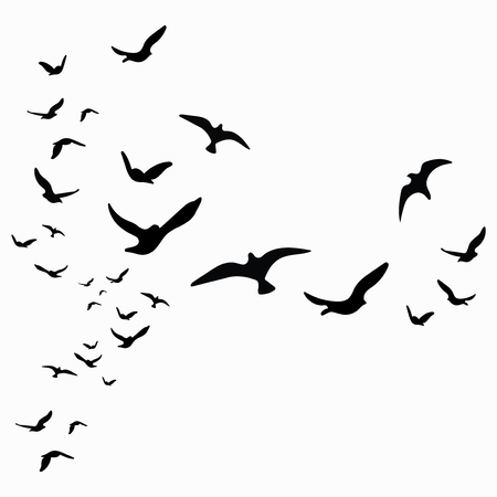 Silhouette of a flock of birds. Black contours of flying birds. Flying pigeons. Tattoo. Isolated objects on white background. Ilustração