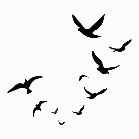 Silhouette of a flock of birds. Black contours of flying birds. Flying pigeons. Tattoo. Isolated objects on white background. Stock Illustratie