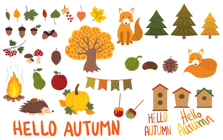 A set of autumn elements. Collection of autumn animals and plants. Vector illustration.