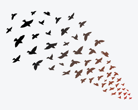 Flock of birds flying. Illustration