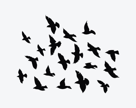Flock of birds flying. Vettoriali