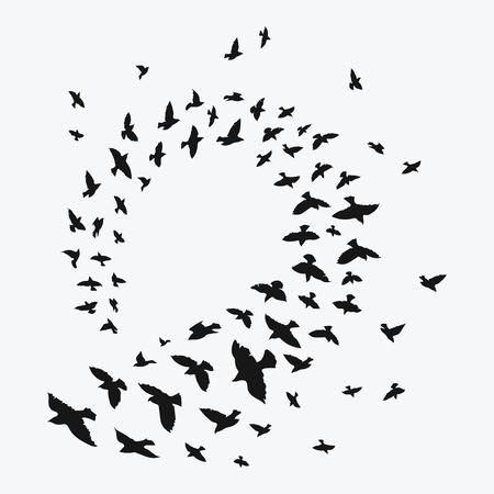 Black contours of flying birds.