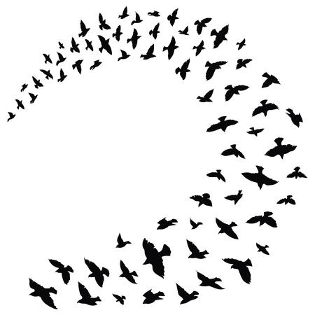 飛んでいる鳥の群れ。