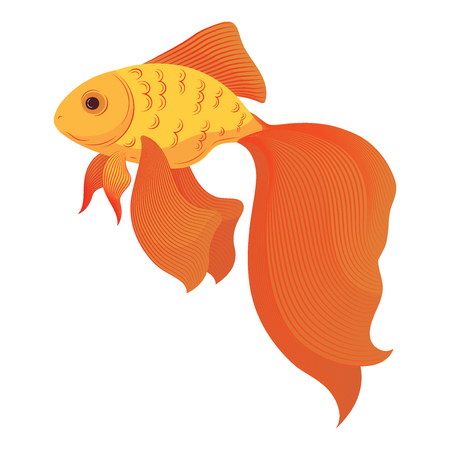 A cartoon goldfish. Stylized goldfish. Aquarium fish. Vector illustration of an orange fish.