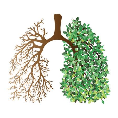 Poumons humains. Système respiratoire. Des poumons sains. Lumière sous la forme d'un arbre. Dessin au trait Dessin à la main. Médicament.