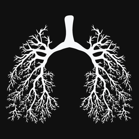 Human lungs. Respiratory system. Healthy lungs. Light in the form of a tree. Black and white drawing on a chalkboard. Medicine. Vettoriali