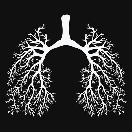 Pulmões humanos. Sistema respiratório. Pulmões saudáveis. Luz na forma de uma árvore. Desenho preto e branco em um quadro-negro. Remédio. Ilustración de vector