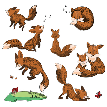 Set of cartoon foxes. Collection of cute foxes. Vector illustration for children. Wild animals.