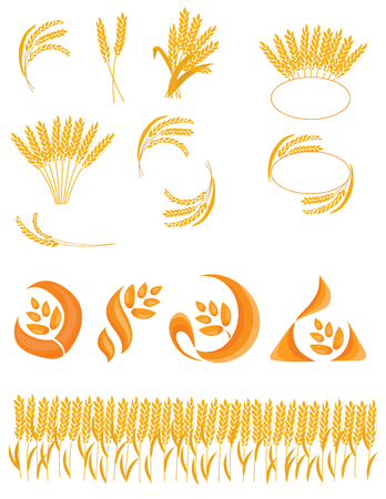 Set of spikelets of wheat. Collection of logos with wheat. Vector illustration of a plant. Logo.
