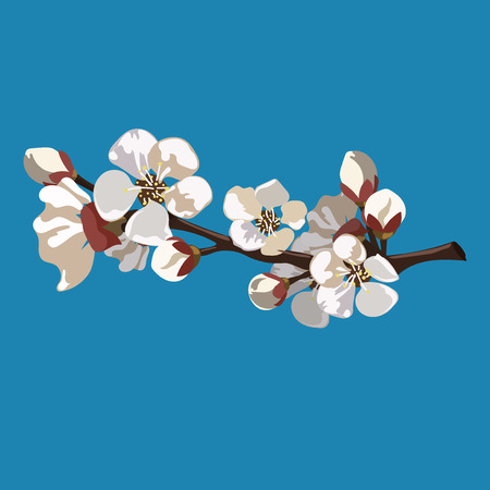 Branch with sakura flowers. Cartoon illustration of a cherry blossom in spring.