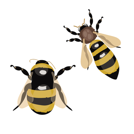 Set of vector stylized bees.