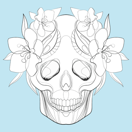 Vector stylized skull. Human skull with ornaments. Linear Art. Vectores