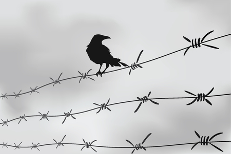 Barbed wire fencing with a crow in Black and white illustration