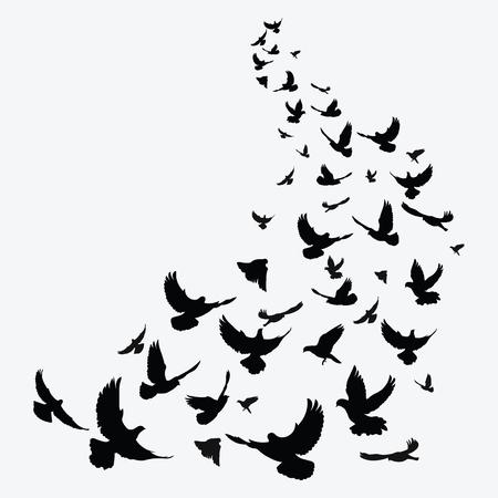 Sagoma di uno stormo di uccelli. Contorni neri di uccelli in volo. Piccioni volanti. Tatuaggio.