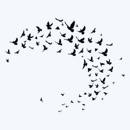 Silhouette of a flock of birds. Black contours of flying birds. Flying pigeons. Tattoo. 向量圖像