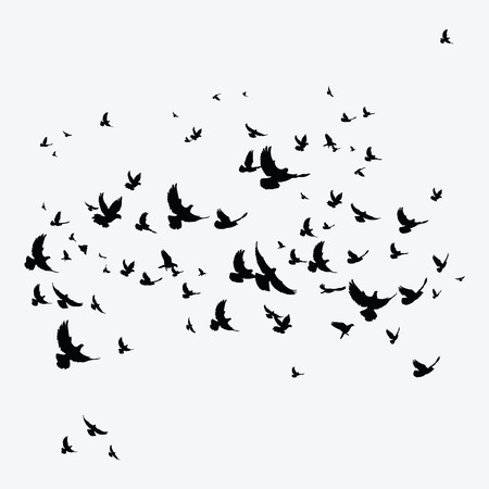 Silhouette of a flock of birds. Black contours of flying birds. Flying pigeons. Tattoo. Stock Illustratie