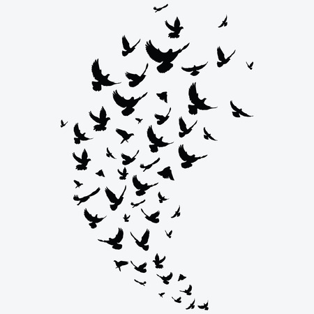 Silhouette of a flock of birds. Black contours of flying birds. Flying pigeons. Tattoo. Stockfoto