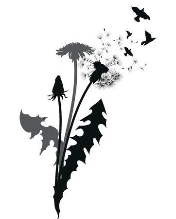 Silhouette of a dandelion with flying seeds. Black contour of a dandelion. Black and white illustration of a flower. Summer plant. Tattoo. Illustration