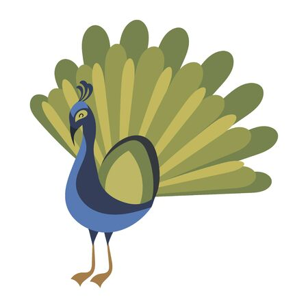 Cartoon peacock. Vector illustration of a cute peacock. Drawing birds for children. Zoo for kids.