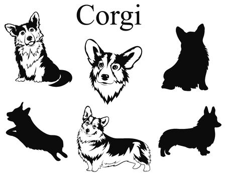 Set of corgi. Collection of dogs. Black and white illustration of a dog corgi. Vector drawing of a pet. Tattoo.