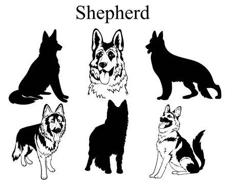 Conjunto de pastor. Colección de perros. Ilustración en blanco y negro de un perro pastor. Dibujo de una mascota vectorial. Tatuaje.