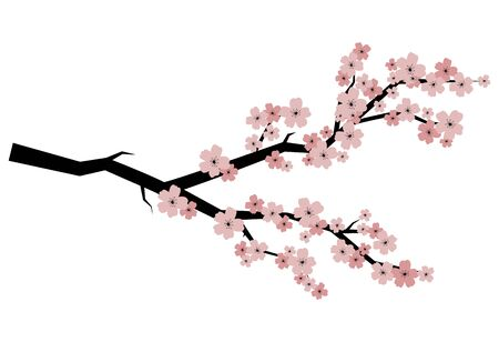 Blooming cherry. Sakura branch with flower buds. Cartoon drawing of a blossoming tree in spring. Ilustrace