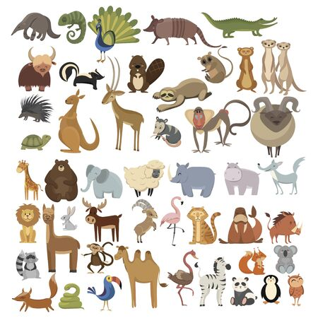 Set of animals. Collection of cartoon animals. Residents of the forest and the jungle. Vector illustration of animals for children. 向量圖像