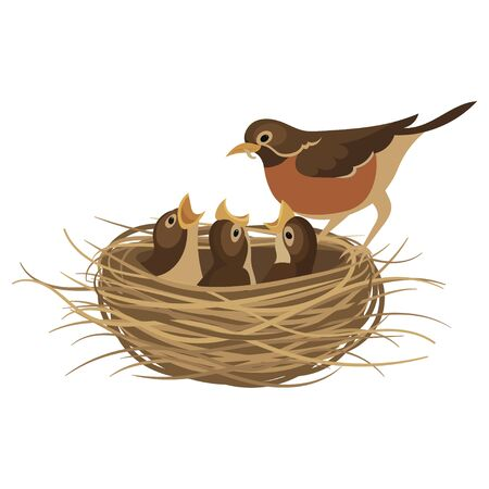 Cartoon birds nest with chicks. Vector illustration for children. Springtime.
