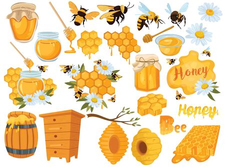 Ensemble de miel. Collection de l'apiculture. Ensemble de rucher de dessin animé. Illustration de la ruche, des abeilles et des nids d'abeilles. Dessin de miel pour les enfants vectoriel.