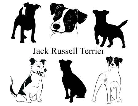 Set von Jack-Russell-Terrier. Sammlung von Rassehunden. Schwarzweiss-Abbildung eines Hundejack-Russell. Vektorgrafik eines Haustieres. Tätowierung. Vektorgrafik