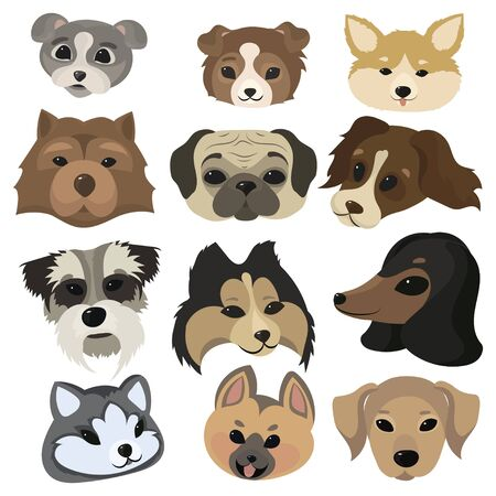 Set of cartoon dog faces. Collection of portraits of dog breeds. Vector illustration of cute dog faces. Drawing for children.