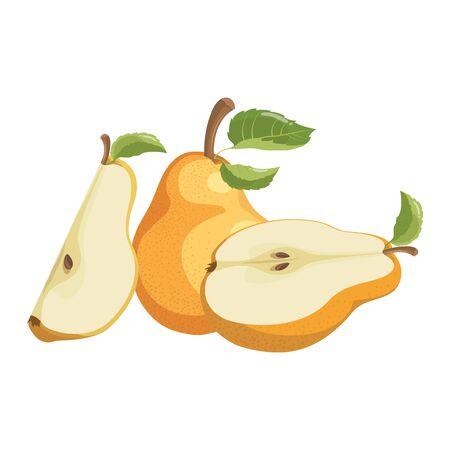 Poire de dessin animé. Fruits tranchés juteux. Dessin pour les enfants. Illustration sur fond blanc. Vecteurs