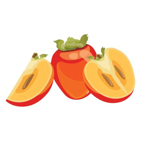 Cartoon persimmon. Fresh vitamin fruit. Juicy sliced fruit. Illustration on white background.
