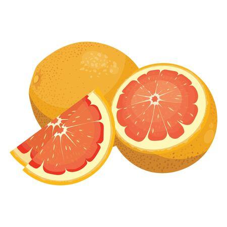 Cartoon grapefruit. Fresh vitamin fruit. Juicy citrus cut into slices. Illustration on white background. Çizim
