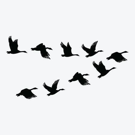 Flock of ducks. A cartoon flock of birds. Vector illustration of flying birds. Drawing for children. 스톡 콘텐츠 - 129672500