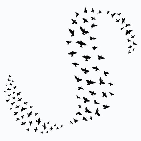 Silhouette of a flock of birds. Black contours of flying birds. Flying pigeons. Tattoo. 일러스트