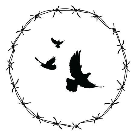 Palomas en alambre de púas. Pájaros volando a través de la valla.