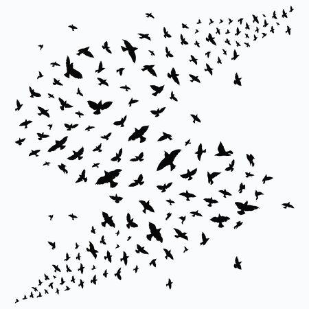 Silhouette of a flock of birds. Black contours of flying birds. Flying pigeons. Tattoo. Ilustração