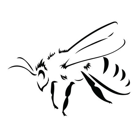 bee. Black and white bee icon. Vector illustration with scabs. Stylized insect.