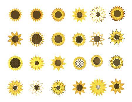 Set of sunflower flowers. Collection of cartoon sunflowers.