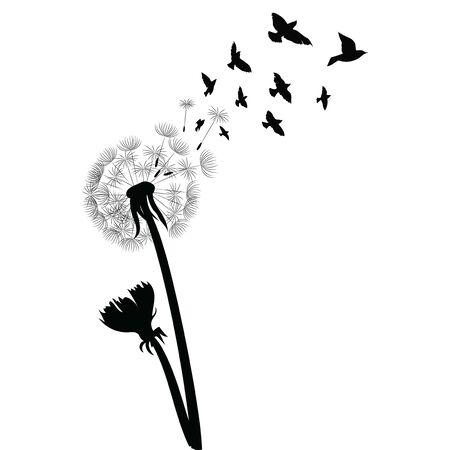 Silhouette d'un pissenlit avec des graines volantes. Contour noir d'un pissenlit. Illustration en noir et blanc d'une fleur. Plante d'été.