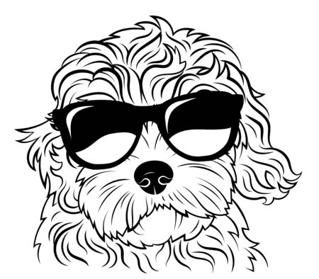 Portrait of a dog in glasses. Vector heads of dog breeds of goldendoodle . Drawing of pets .