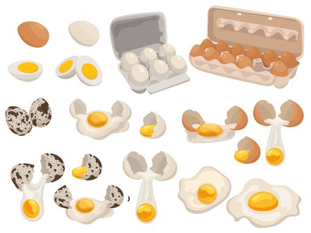Set of farm eggs for food. Collection of chicken and quail eggs in the package. Vector illustration of food for shops. Ilustração