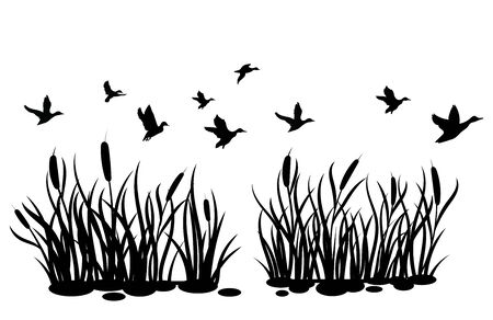 A flock of wild ducks flying over a pond with reeds. Black and white illustration of ducks flying over the river. Vector drawing of a wild bird for the hunter. Иллюстрация