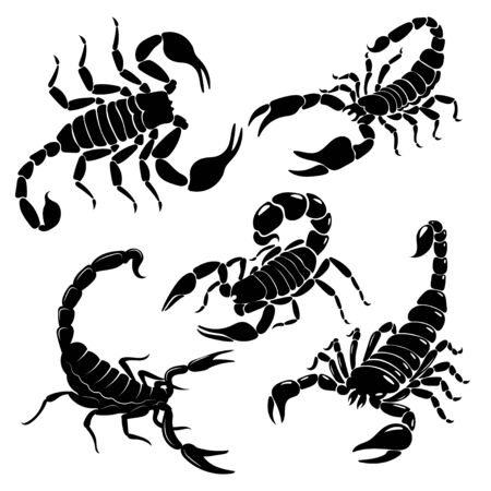 Scorpion set. A collection of black and white stylized scorpions. Vector illustration of poisonous insects. Tattoo.